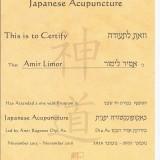 רפואה-יפנית-שנה-א